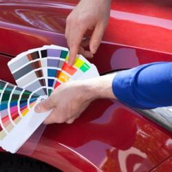 Vopsea Auto Industriala Gama Ral Orice Culoare Mat sau Lucios (la cererea clientului)i 100 gr