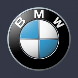 Vopsea auto BMW