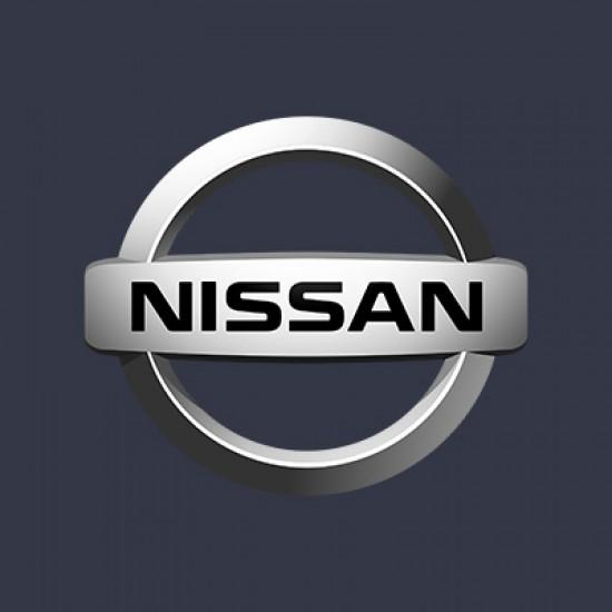 Vopsea Auto Nissan