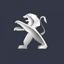 Vopsea Auto Peugeot