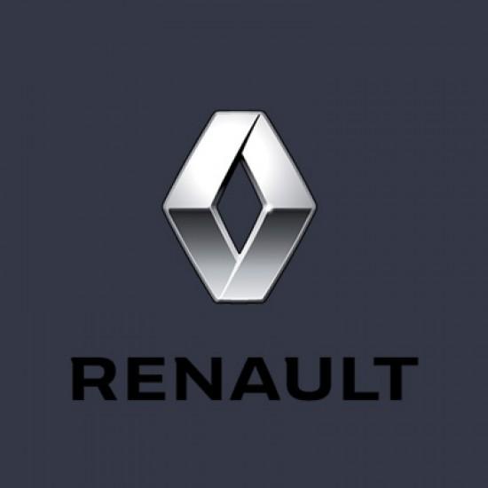 Vopsea Auto Renault