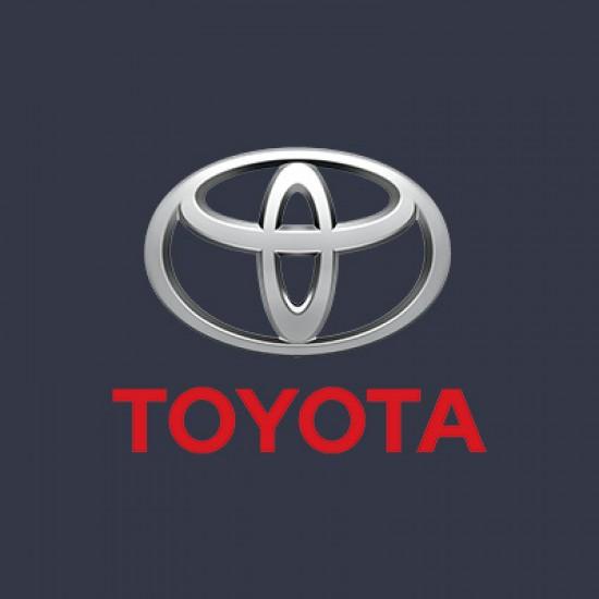 Vopsea Auto Toyota