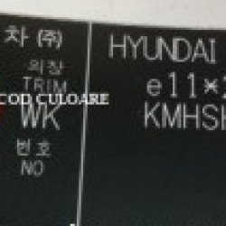 Vopsea Auto Hyundai