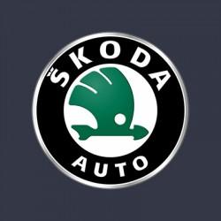 Vopsea Auto Skoda