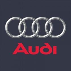 Vopsea Auto Audi